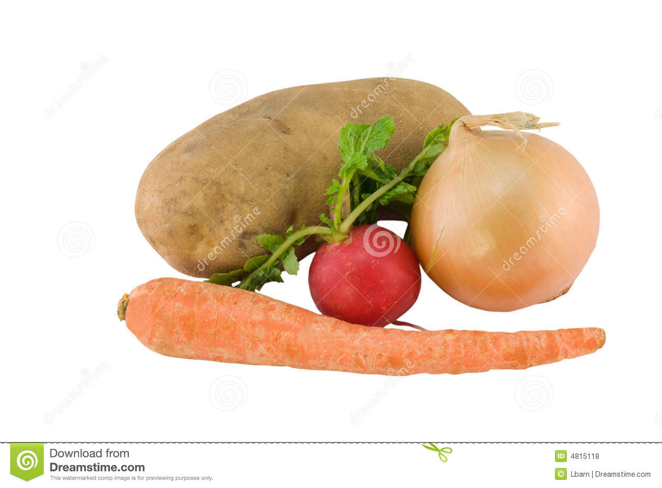 Underground Vegetables On White Stock Photo - Image: 4815118