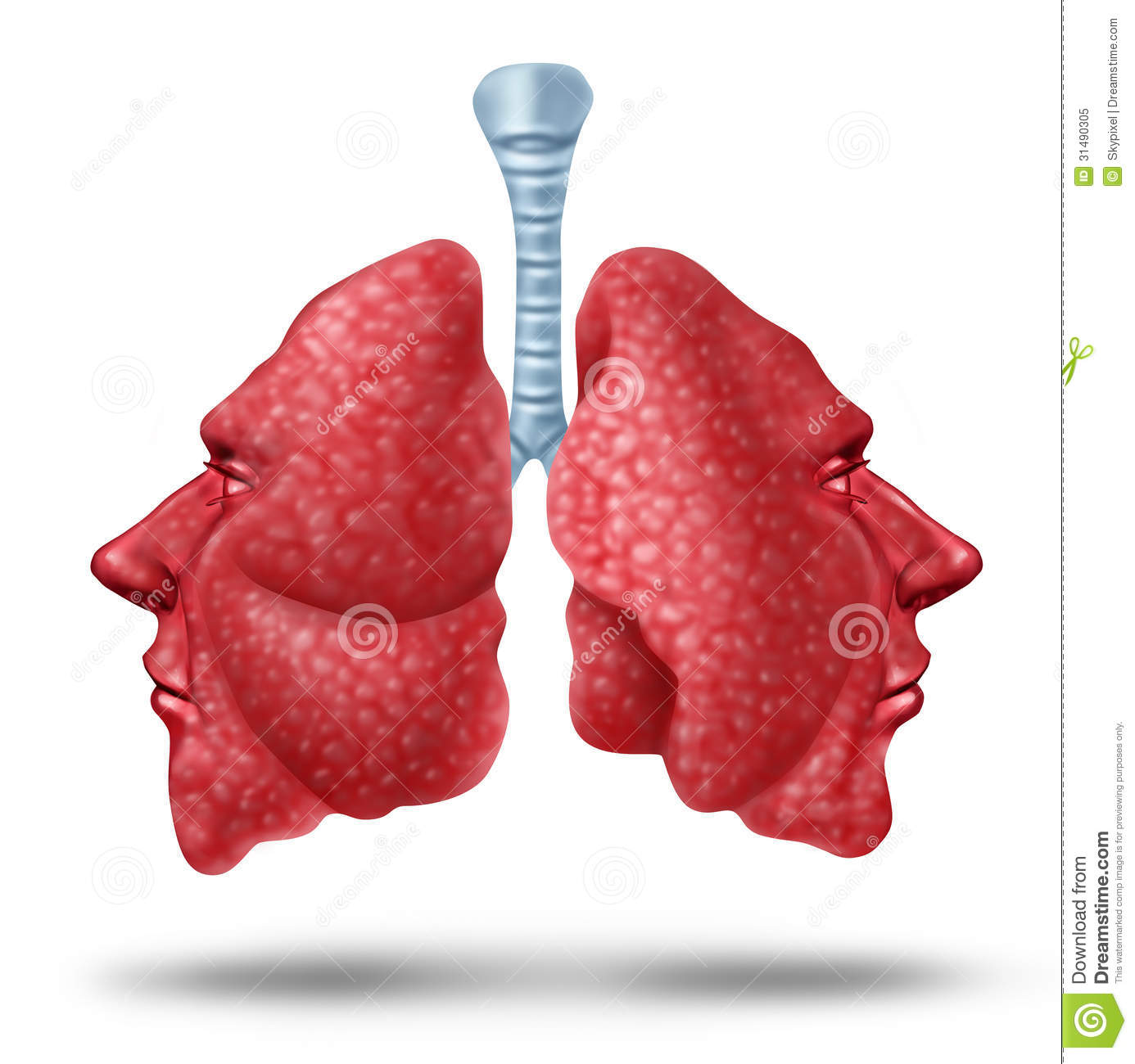 Royalty Free Stock Photo Understanding Lung Health Human Lungs Concept Two Sides Inner Breathing Organ Shaped As Human Heads As Image31490305