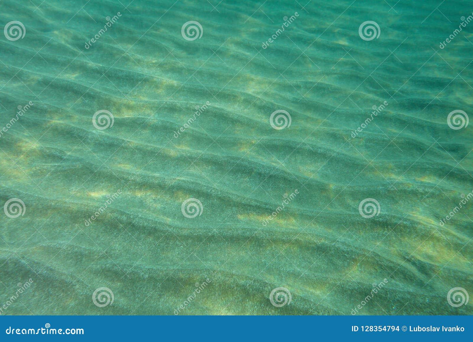 Undervattens- foto för havsbotten,
