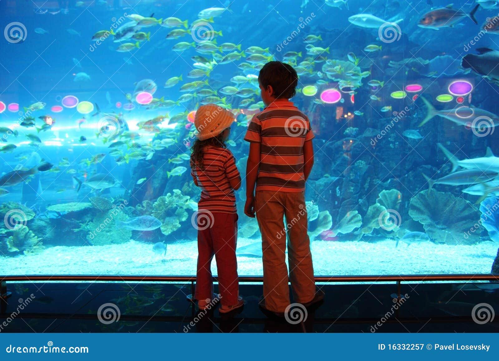 Undervattens- tunnel för akvariumpojkeflicka
