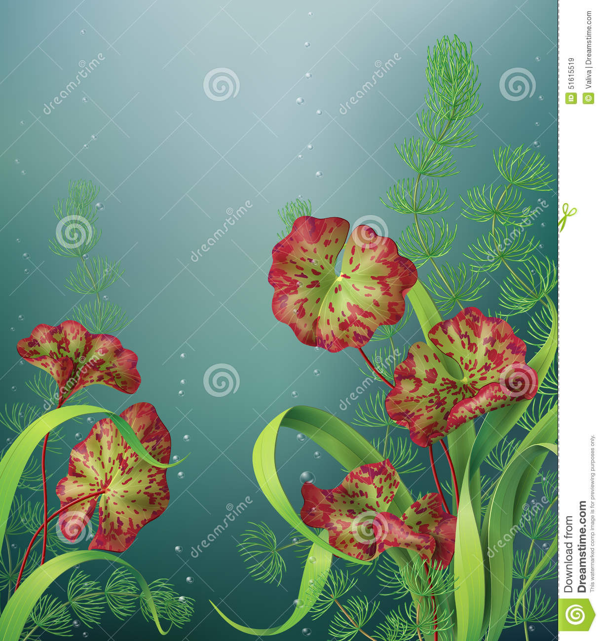 Underwater background with aquatic plants stock vector for Underwater pond plants