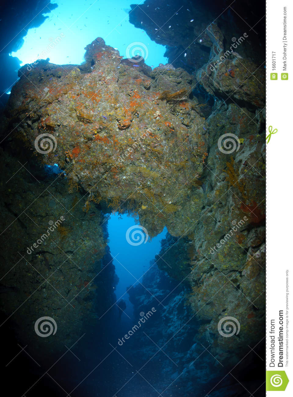 Underwater Canyon Royalty Free Stock Photography - Image ...