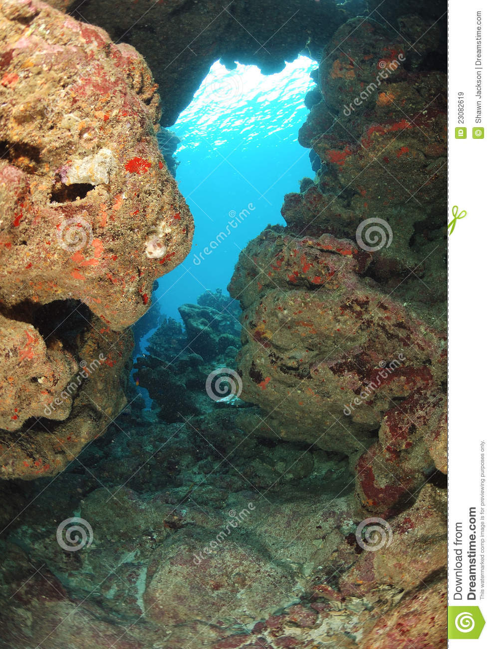 Underwater Canyon Royalty Free Stock Images - Image: 23082619
