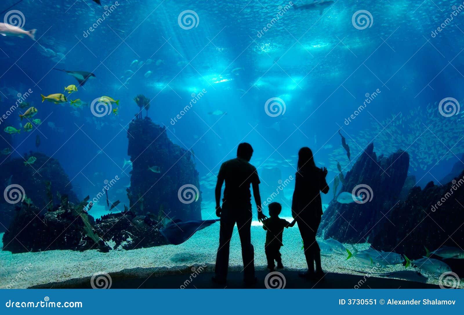 Underwater family