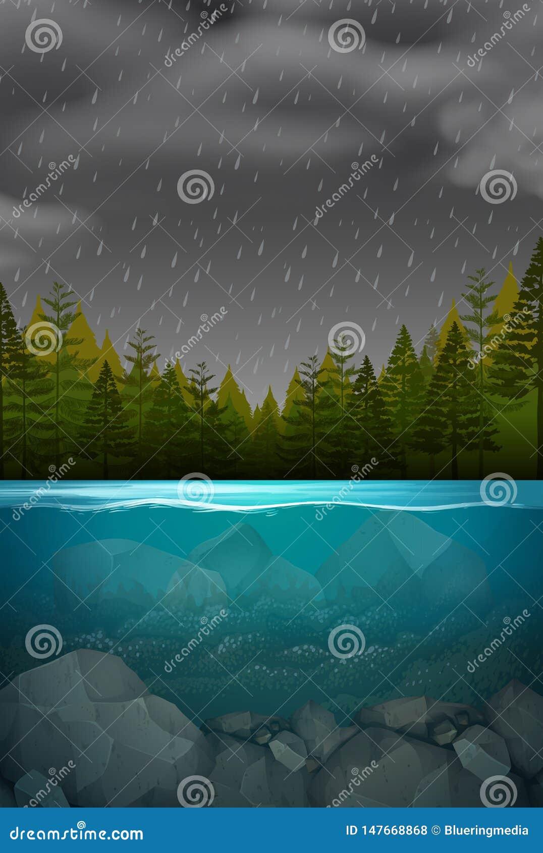 Underwater forest storm scene