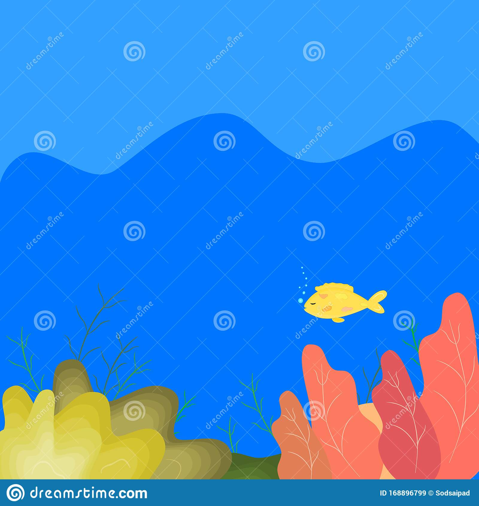 Underwater Life Cutie Beaudiful Fish And Plant With