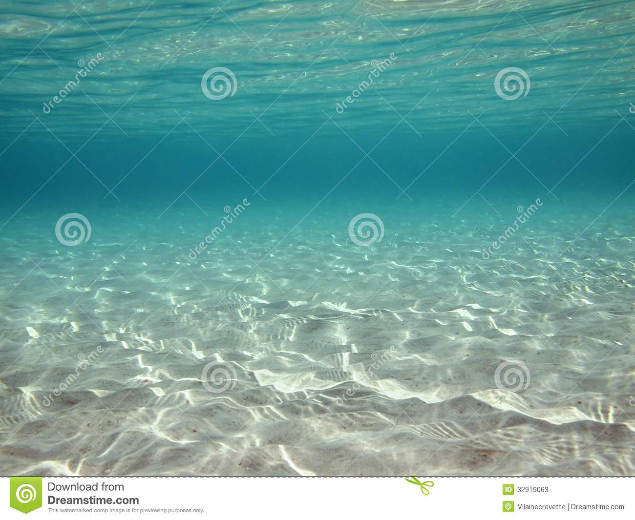 Underwater Ripples Of Sunlight In Clear Shallow Water
