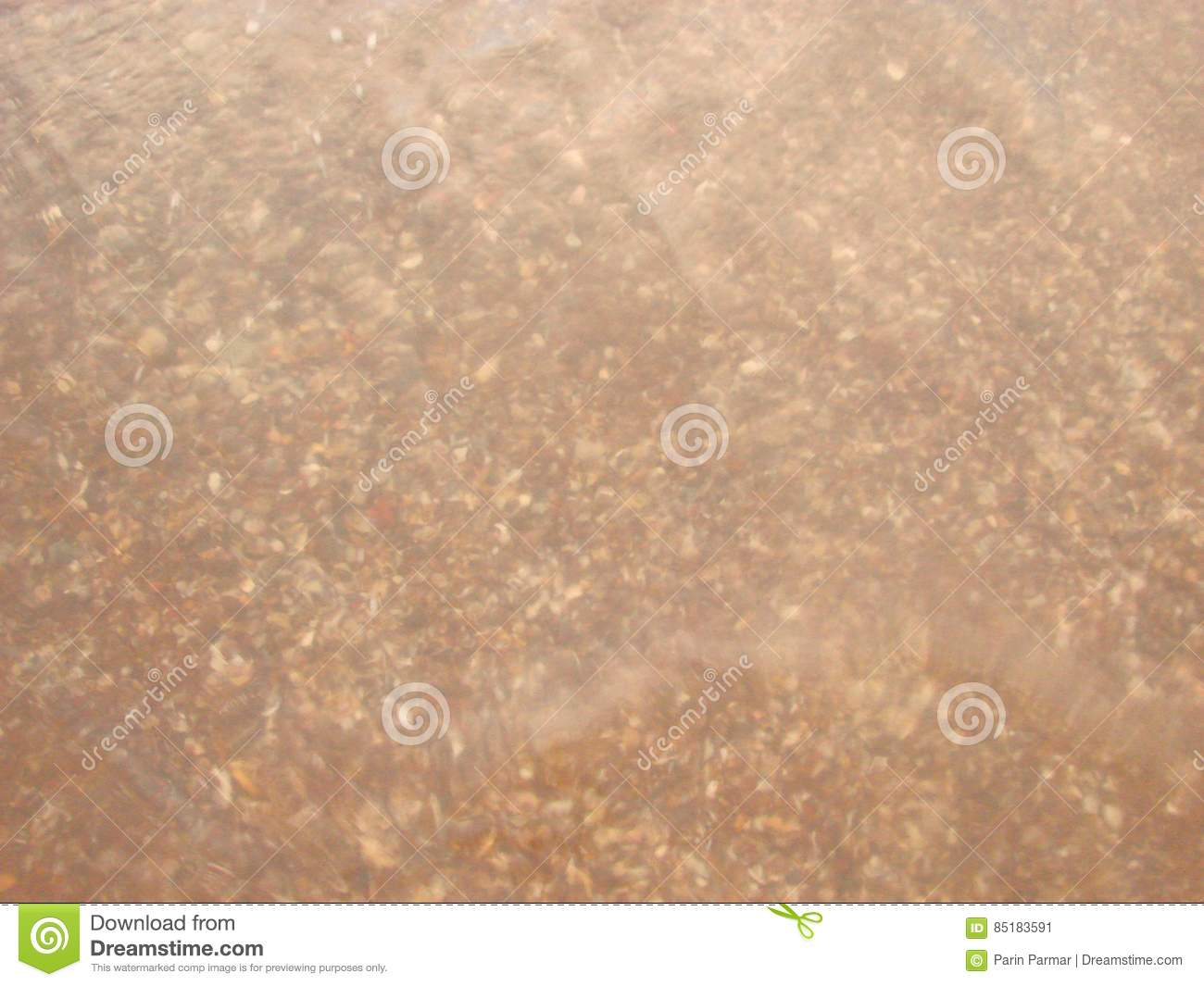 Underwater Shell and Sand - Abstract Background