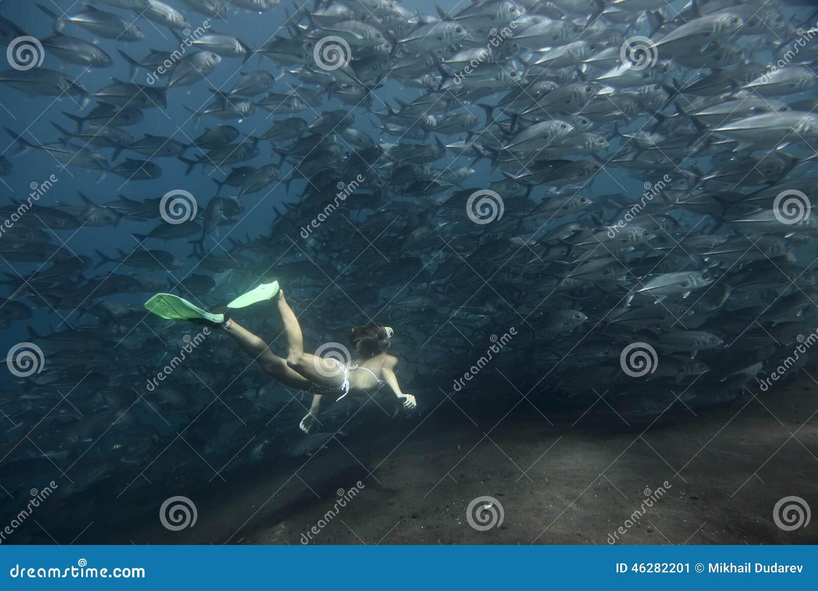 Underwater stock photo image 46282201 for How do fish breathe underwater