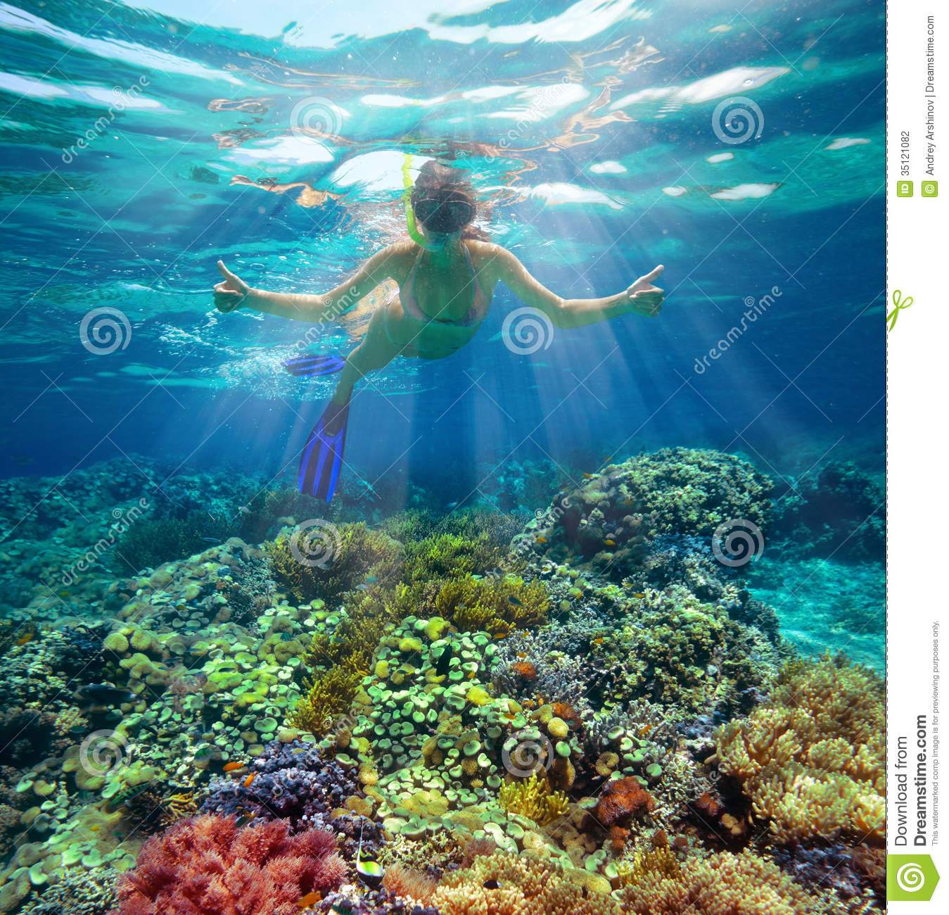 Underwater Shot Of A Woman Snorkeling In The Sun Stock