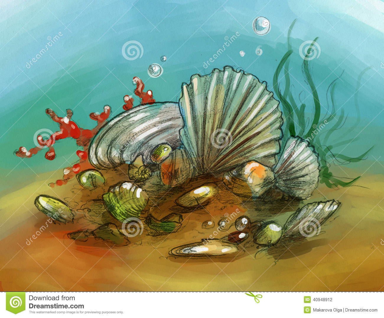 Underwater Still Life With Shells And Corals Stock