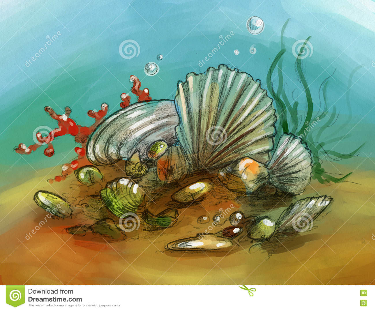Underwater still life with shells and corals