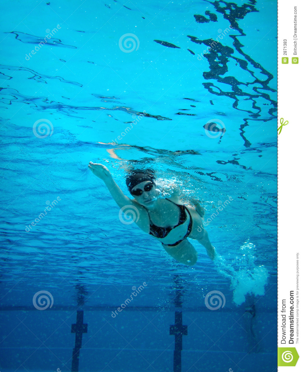 Stock photos underwater swimming woman