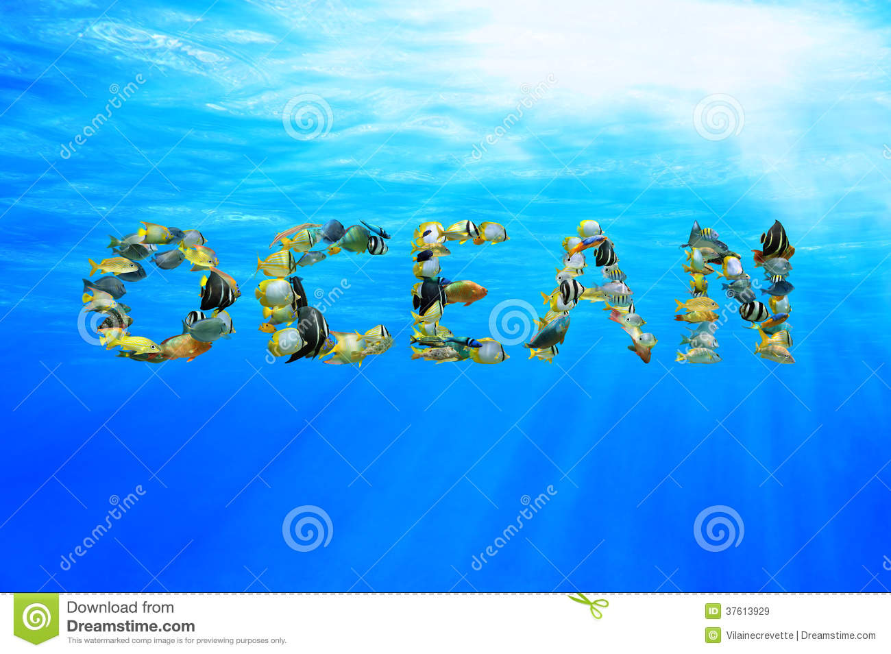 Underwater word ocean composed from fish royalty free for Is fishes a word