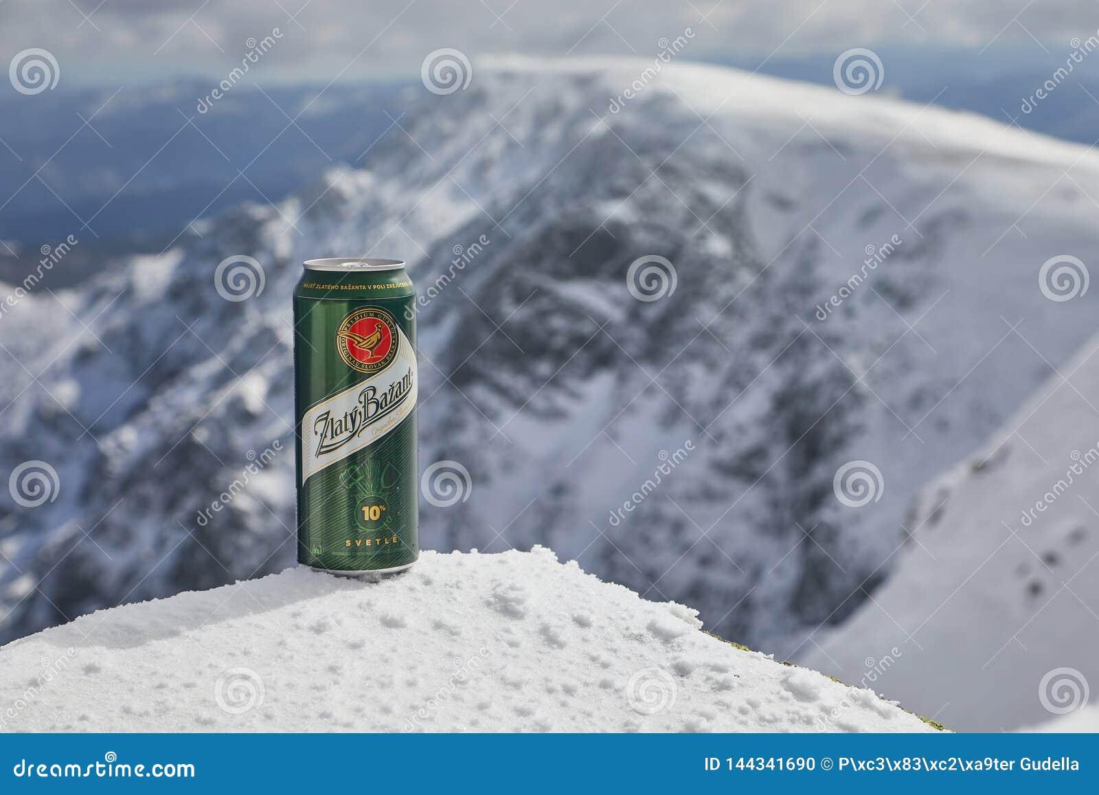 Une boîte de bière de Zlaty Bazant sur une montagne