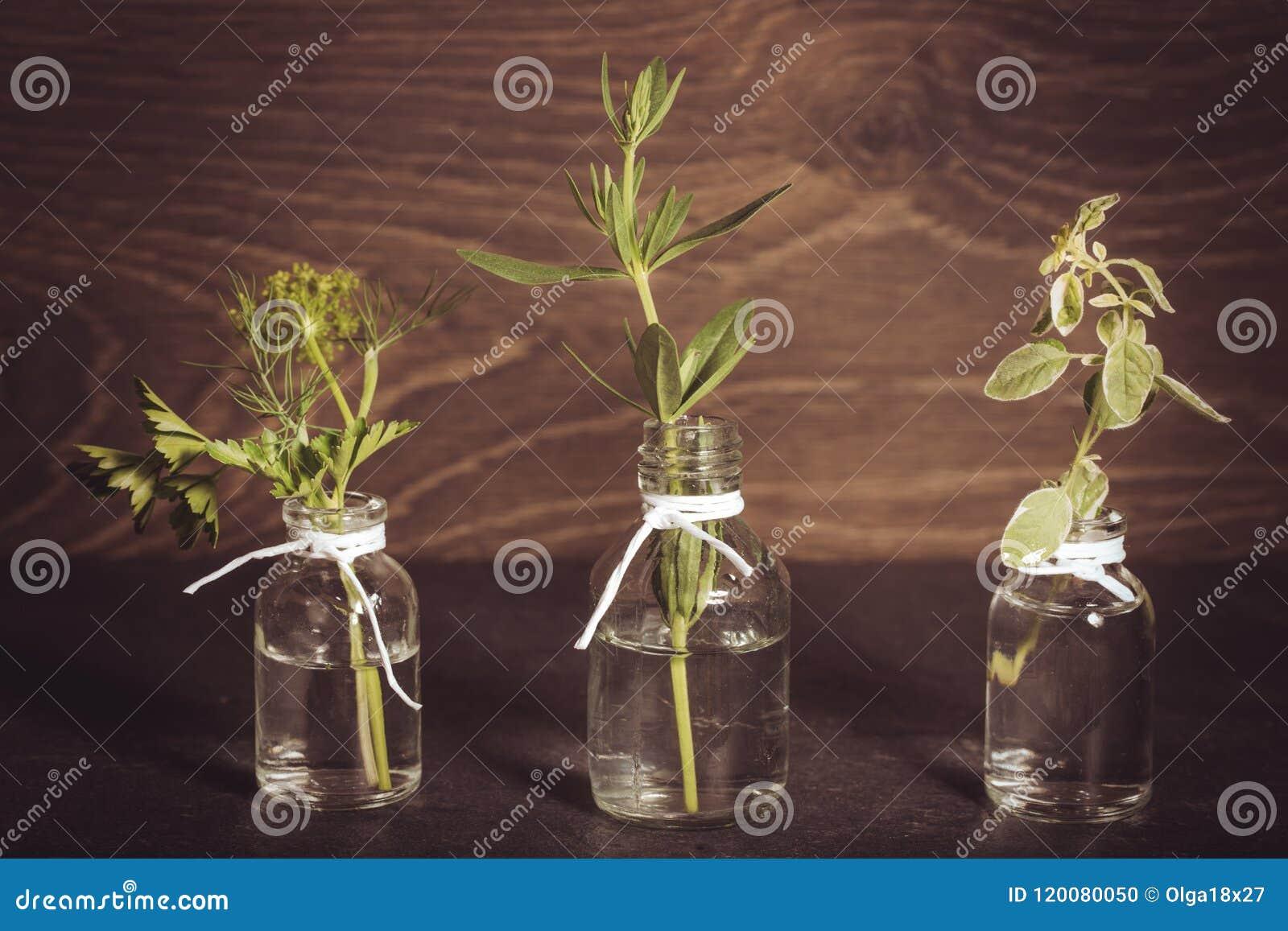 Une bouteille d huile essentielle avec des herbes, persil, thym, aneth, hysope, ensemble sur un vieux fond en bois Faisant cuire,
