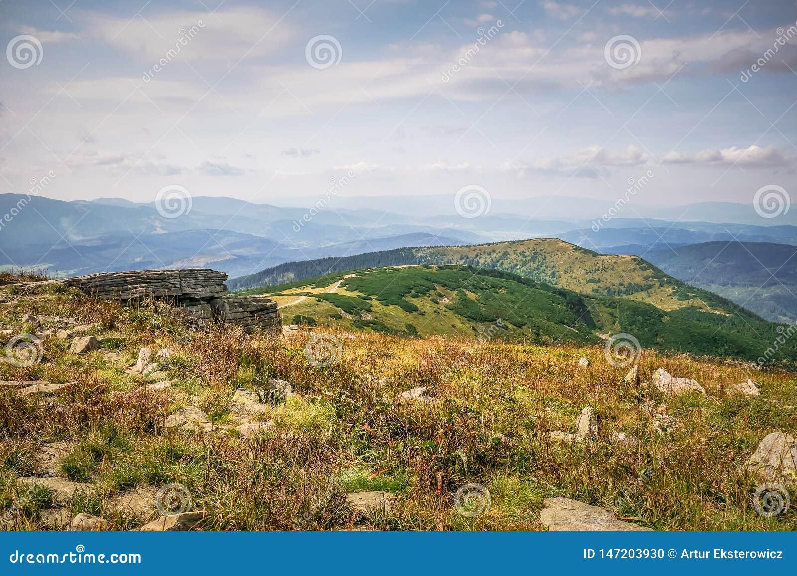 Une clairière de montagne en automne