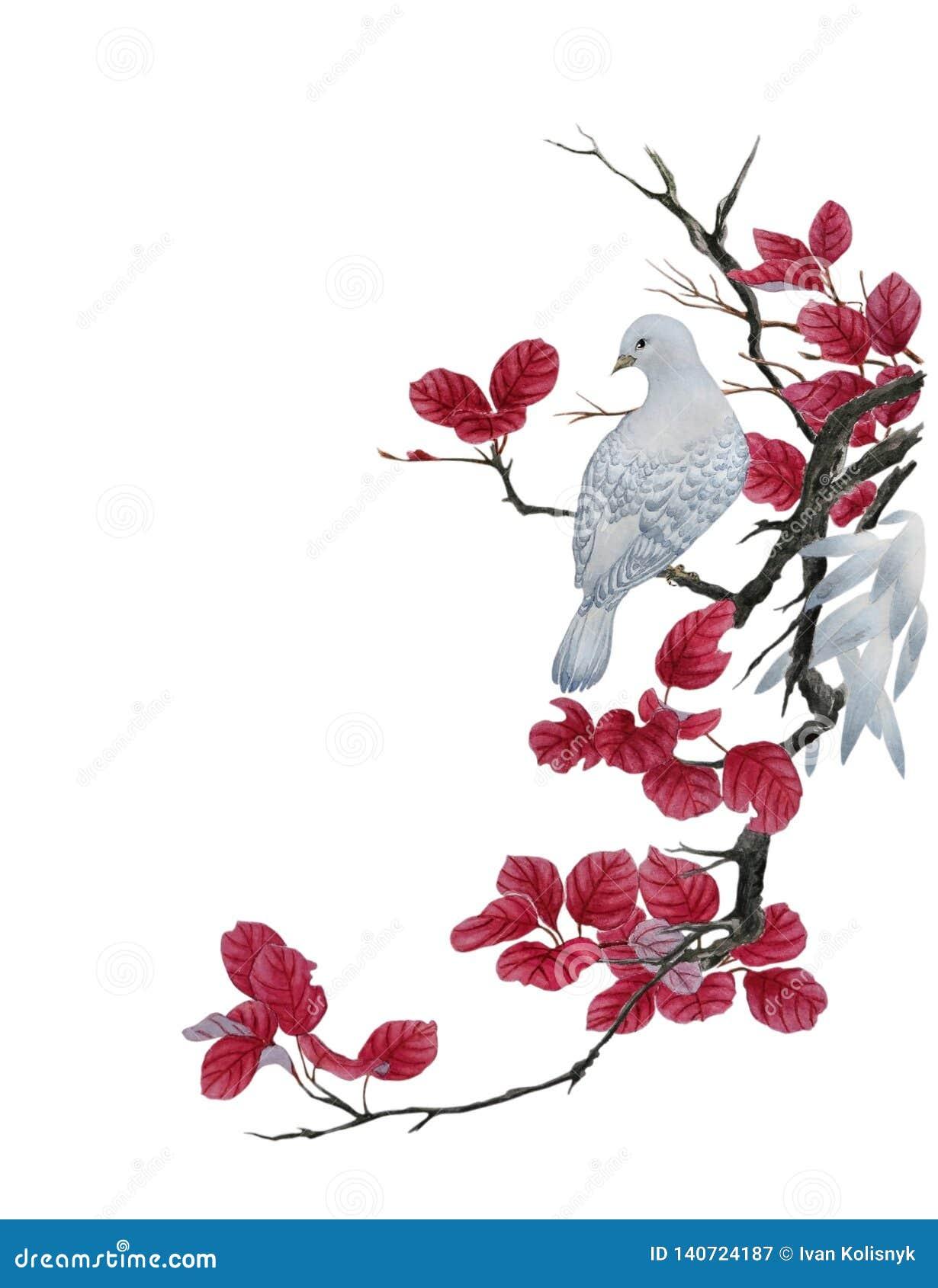 Une colombe blanche sur une branche d arbre avec les feuilles rouges