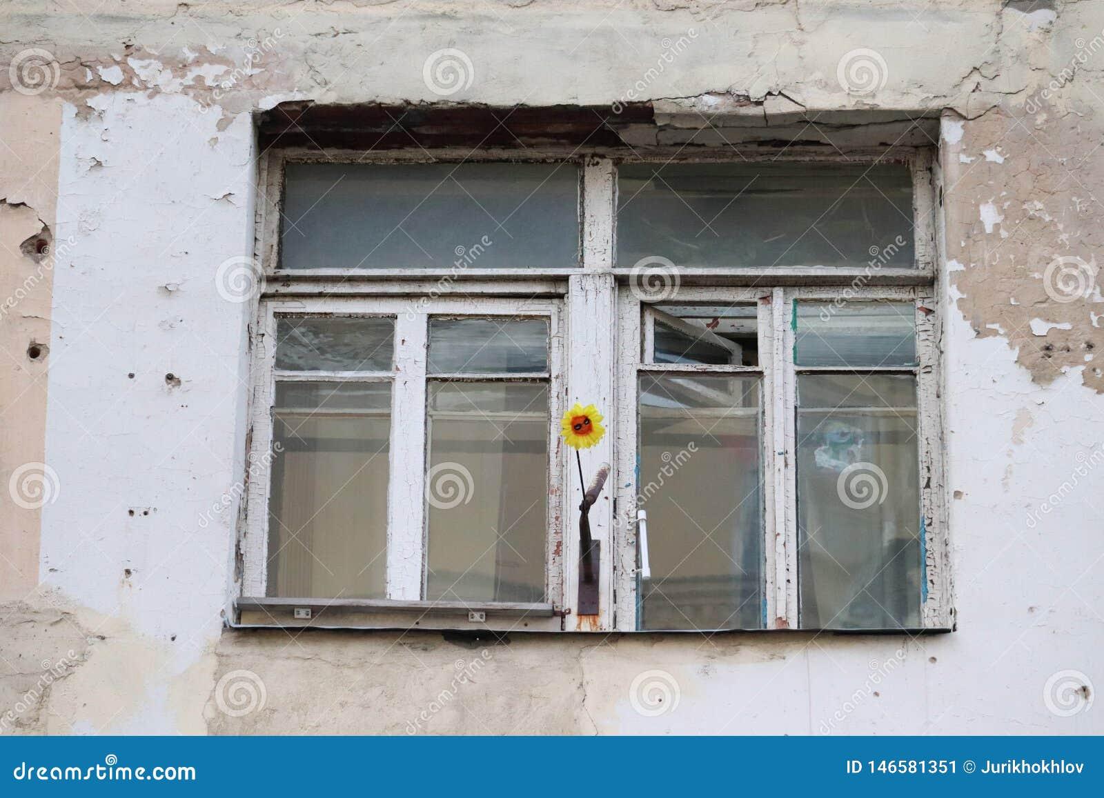 Une fleur peu commune sur un rebord de fenêtre