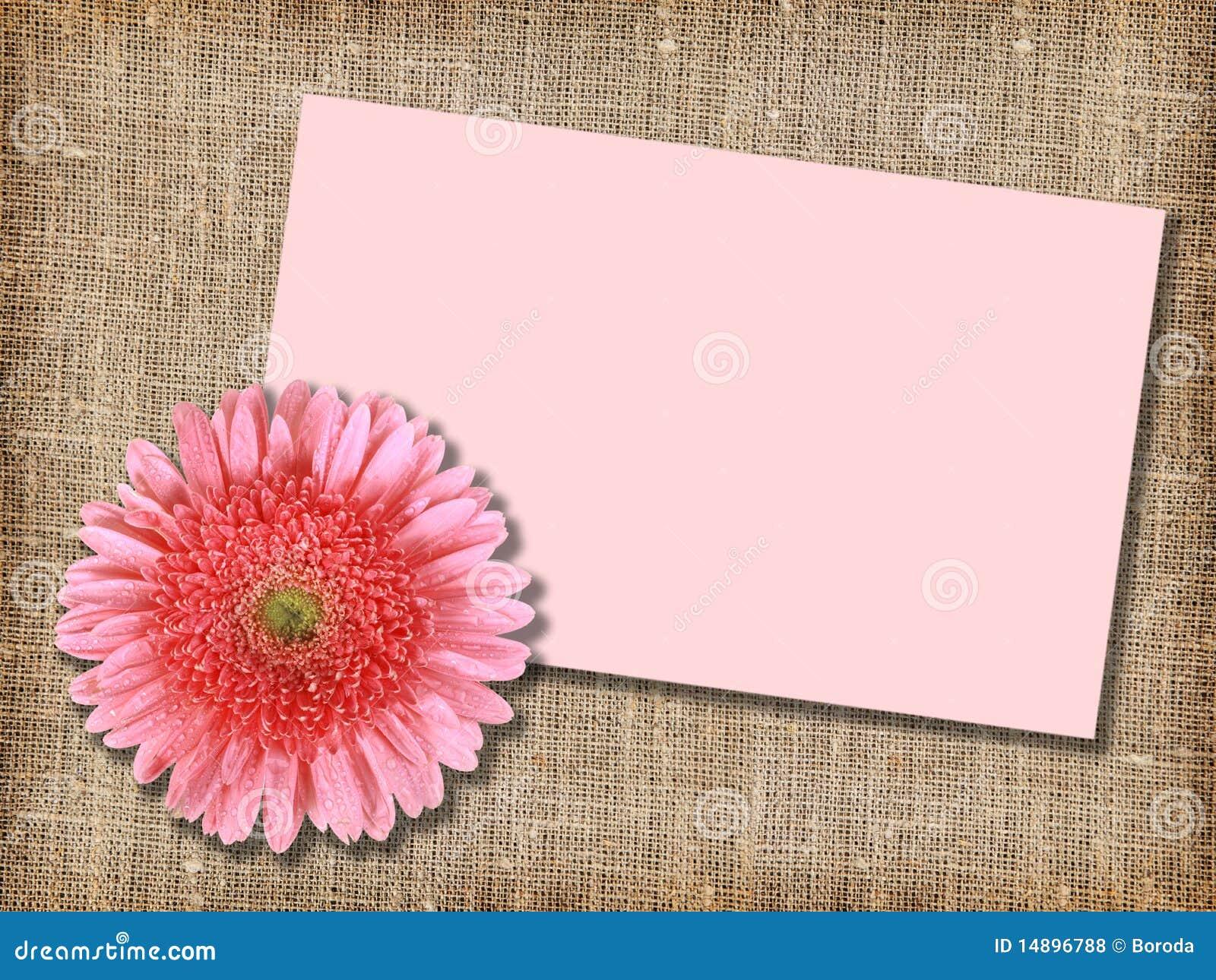 Fleur rose avec carte id e d 39 image de fleur for Livraison fleurs avec message