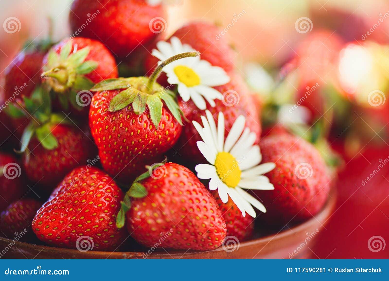 Une fraise fraîche dans une cuvette sur une table dans un jardin d été est ornée avec des fleurs de camomille avec une étape disc