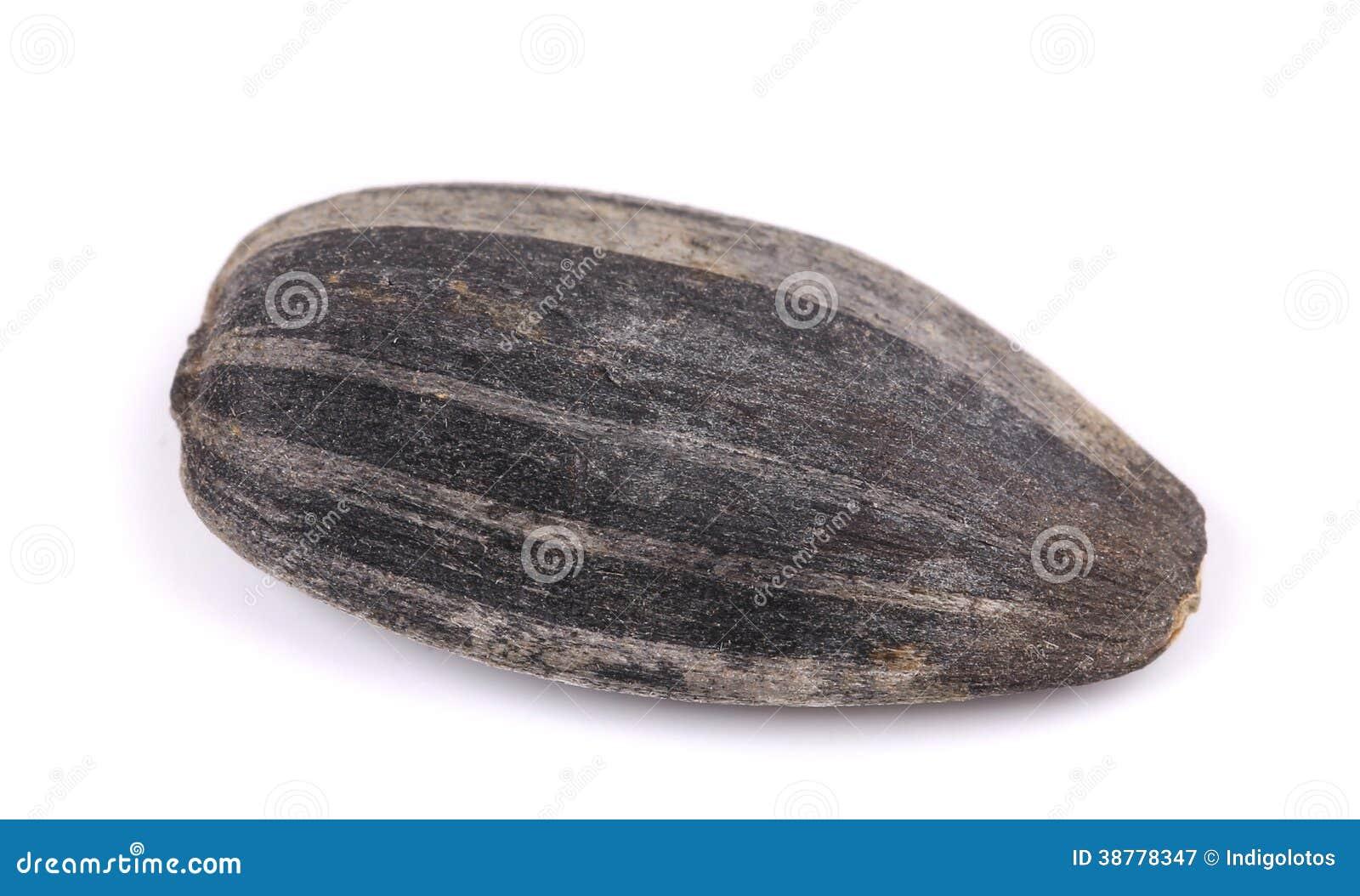 Une graine de tournesol image stock image du heap dieting 38778347 - Graine de tournesol ...