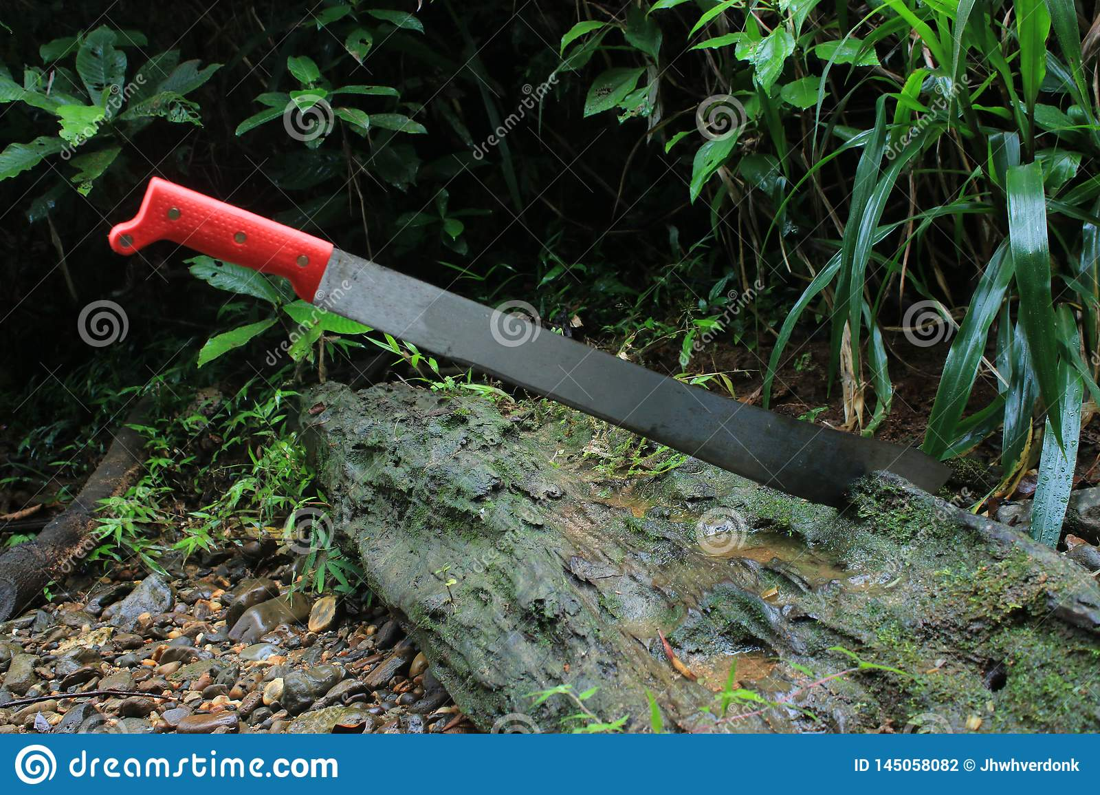 Une machette coincée dans un arbre