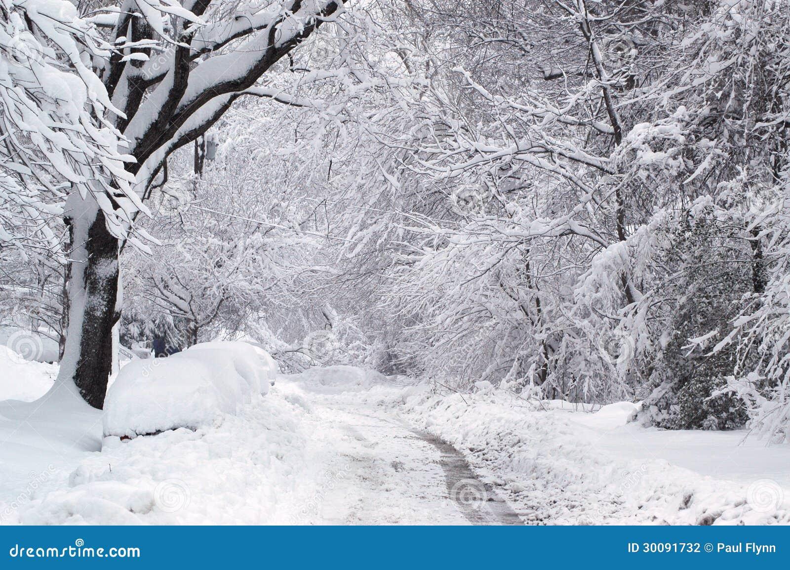 Traînée d hiver