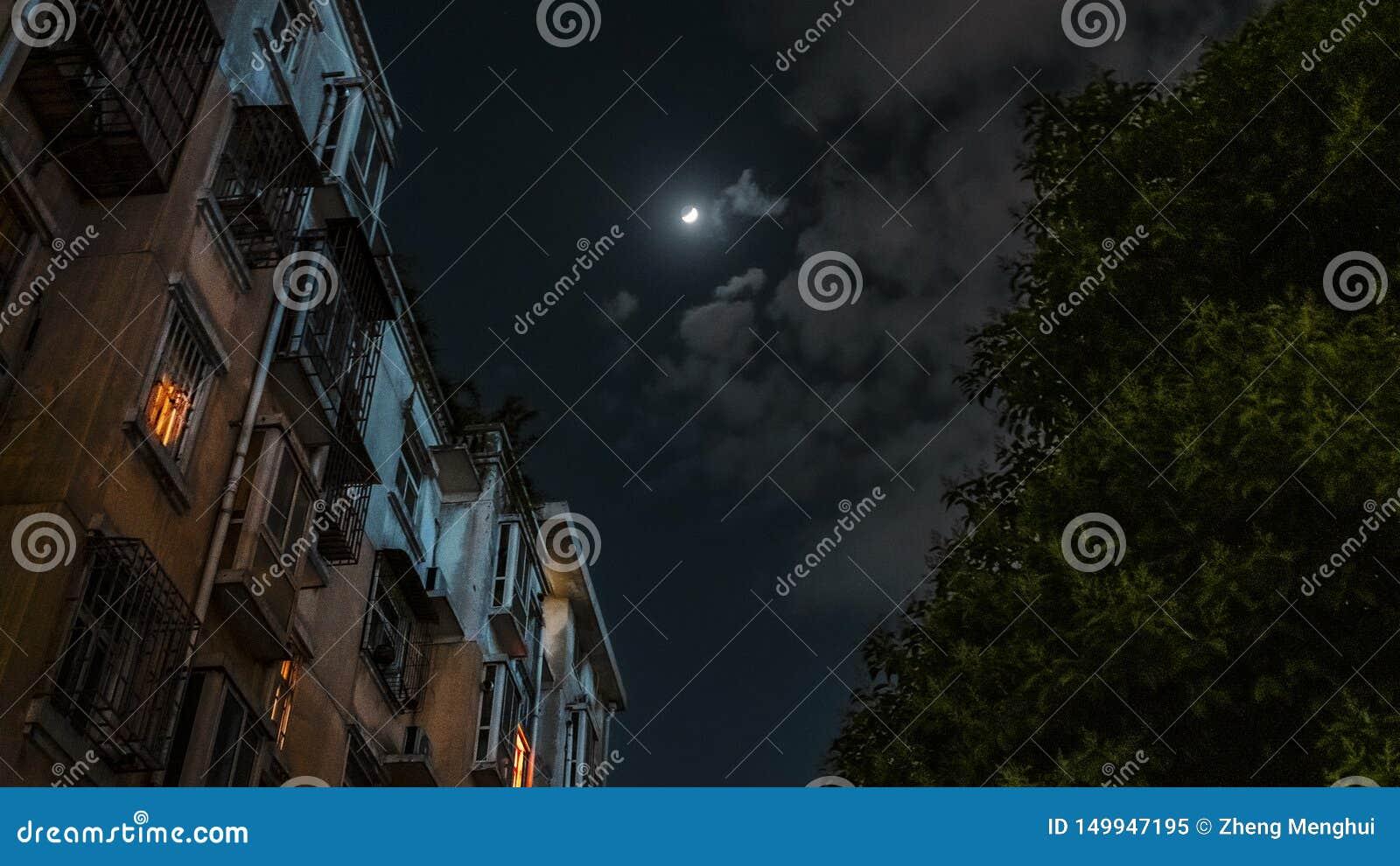 Une nuit éclairée par la lune Scènes rêveuses