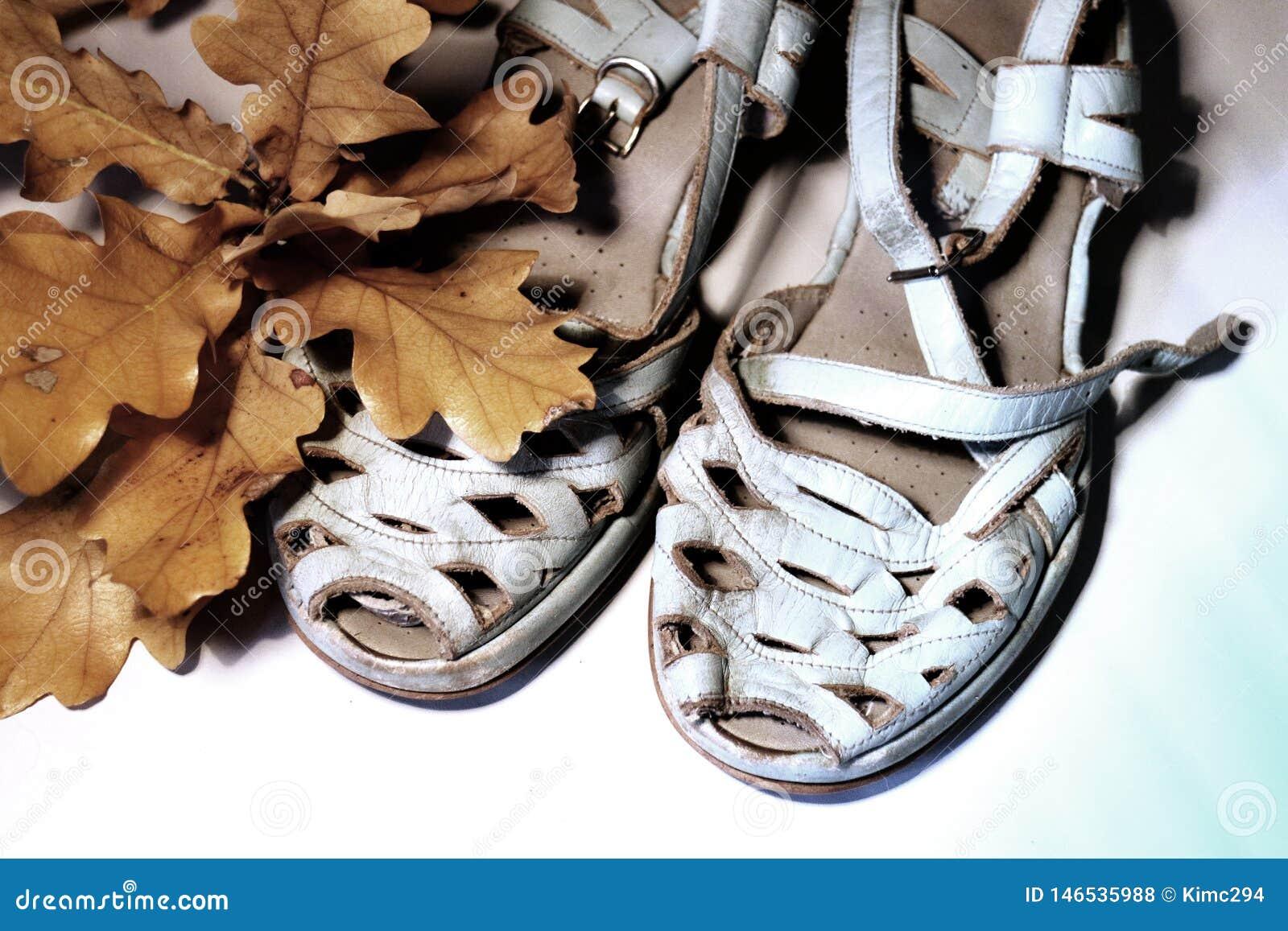 Une paire de sandales temps-usées bleues en pastel pâles se tenant à côté d une branche des feuilles sur le fond blanc