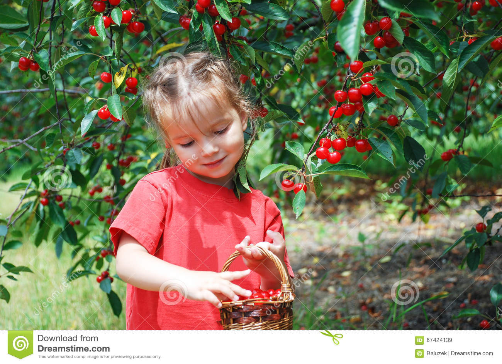 Une petite fille timide dans le jardin de cerise