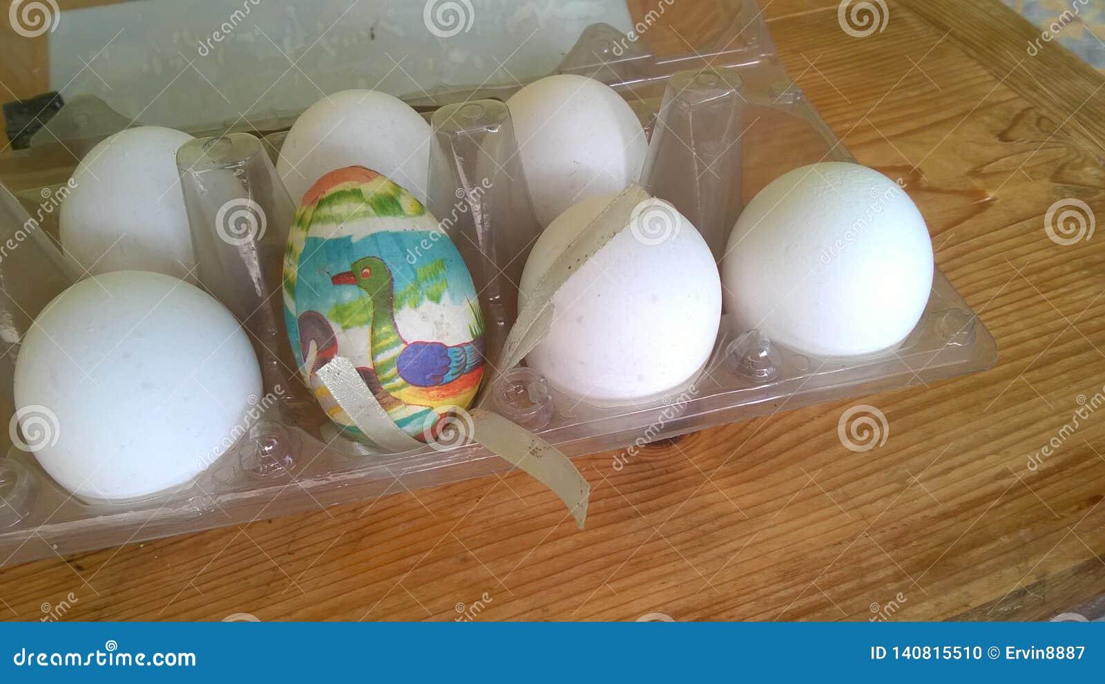 Une photographie de plan rapproché d un oeuf de pâques en plastique peint simple a niché à l intérieur d un carton en plastique d