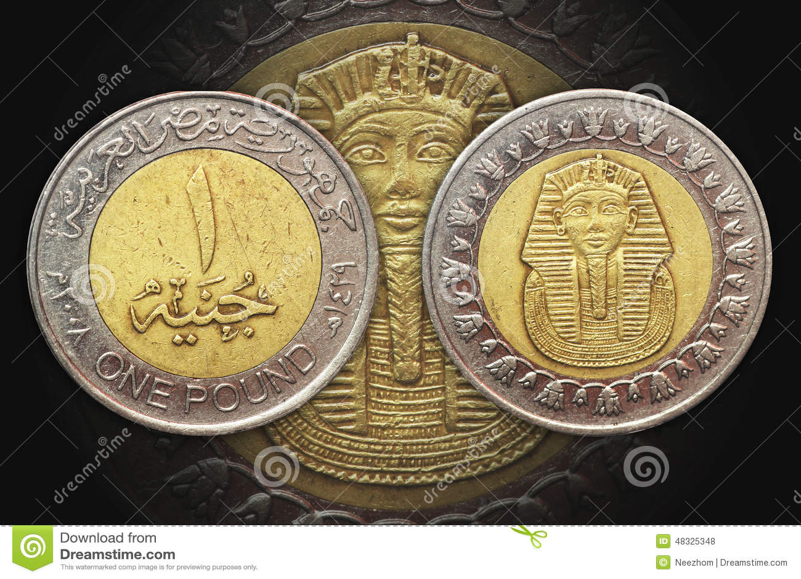 Une Piece De Monnaie De Bimetal De L Egypte De Livre Photo