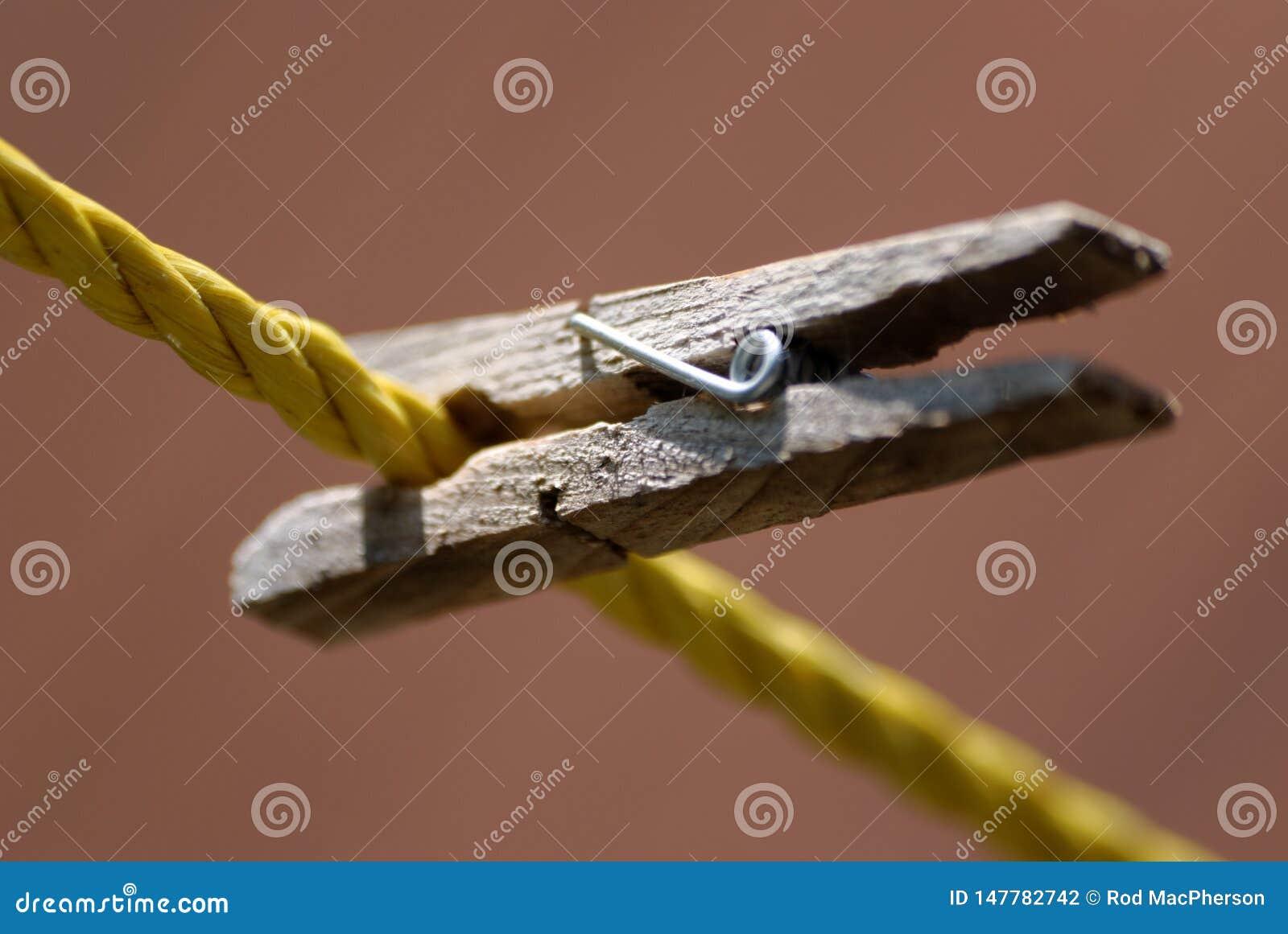 Une pince à linge en bois coupée à la corde à linge