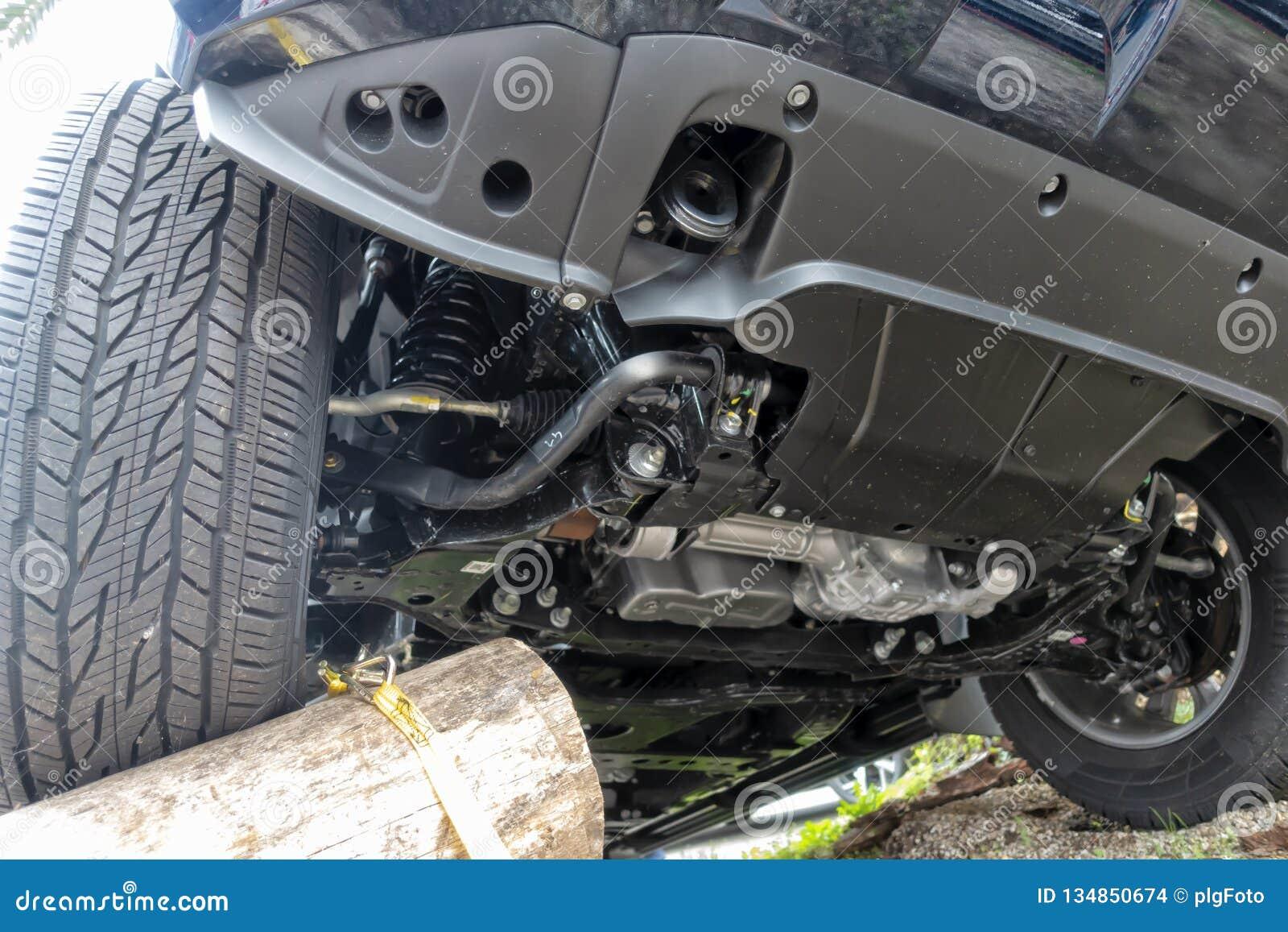 Une voiture tout-terrain monte des troncs