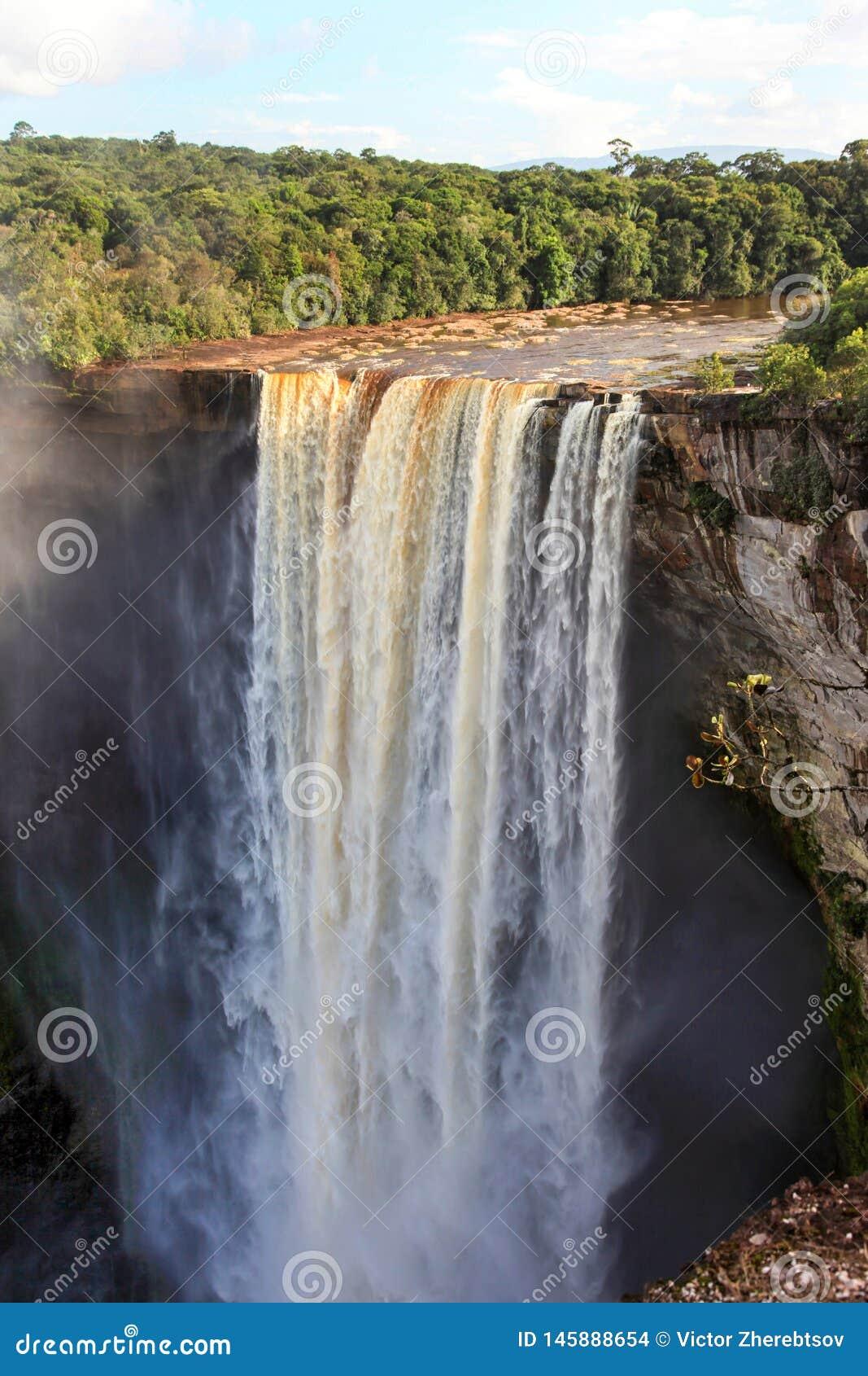 Une vue des chutes de Kaieteur, Guyane