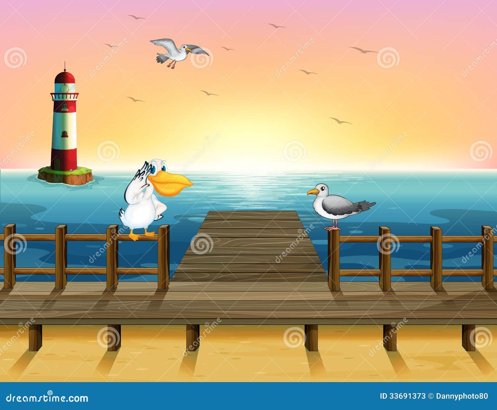 Une vue du port avec les oiseaux