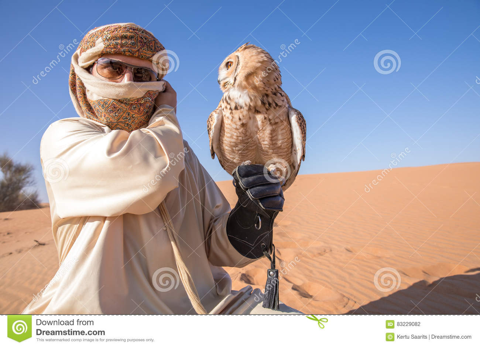 Ung manlig faraoörnuggla under en ökenfalkenerarkonstshow i Dubai, UAE