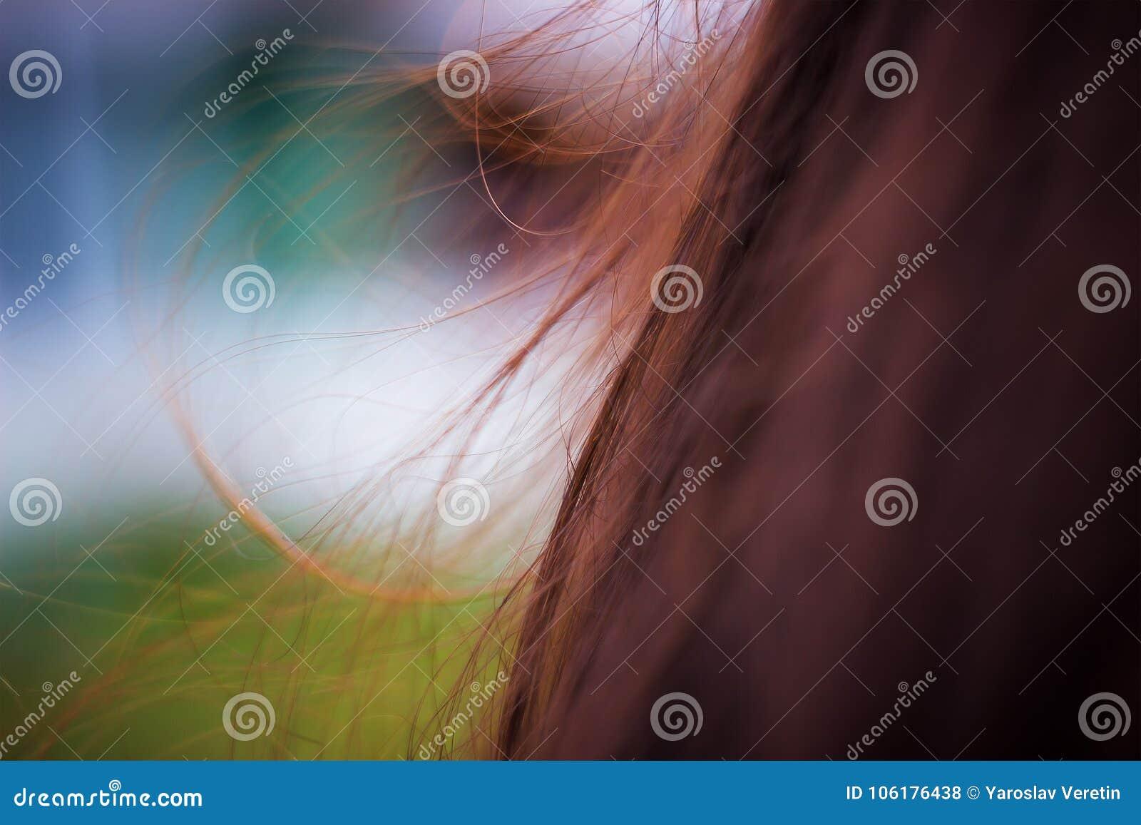 Ung vuxen flicka i vindhår