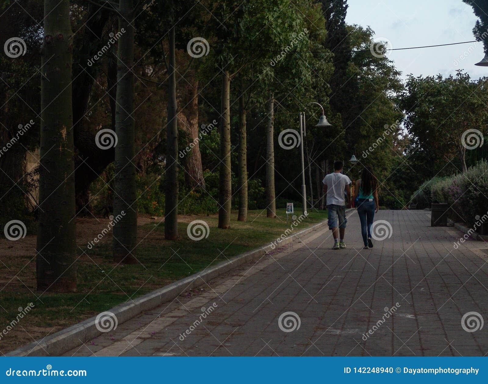 Unga vuxna tonåriga par som går i väg från kamera på gräsplan, parkerar den stenlade gränden på solnedgången med uppställda träd,