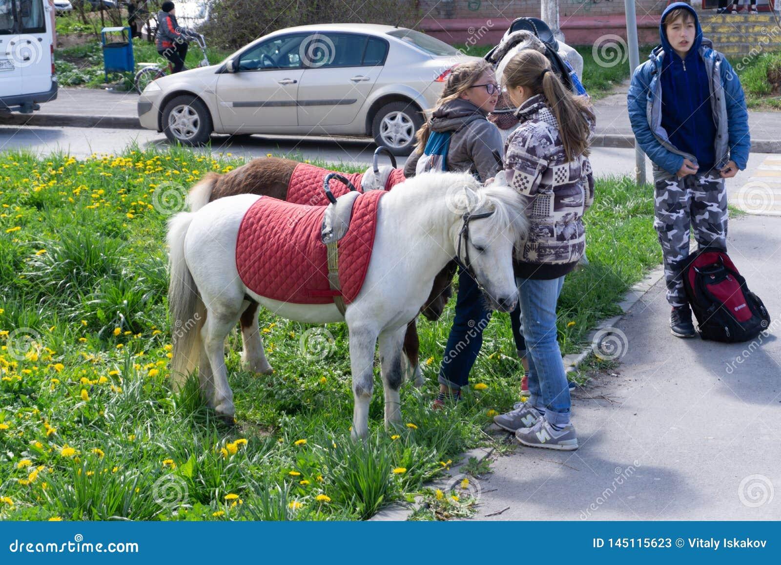 Ungar som rider ponnyn i fj?ll?ngbergen Familjv?rsemester p? h?stranch i ?sterrike, Tirol Barnritth?star Ta för unge