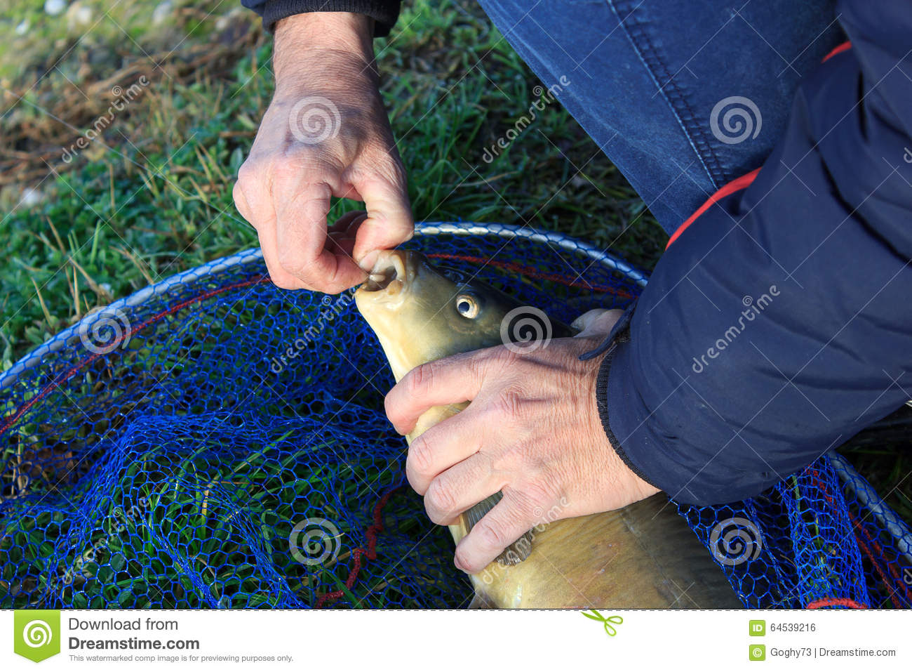 download managing
