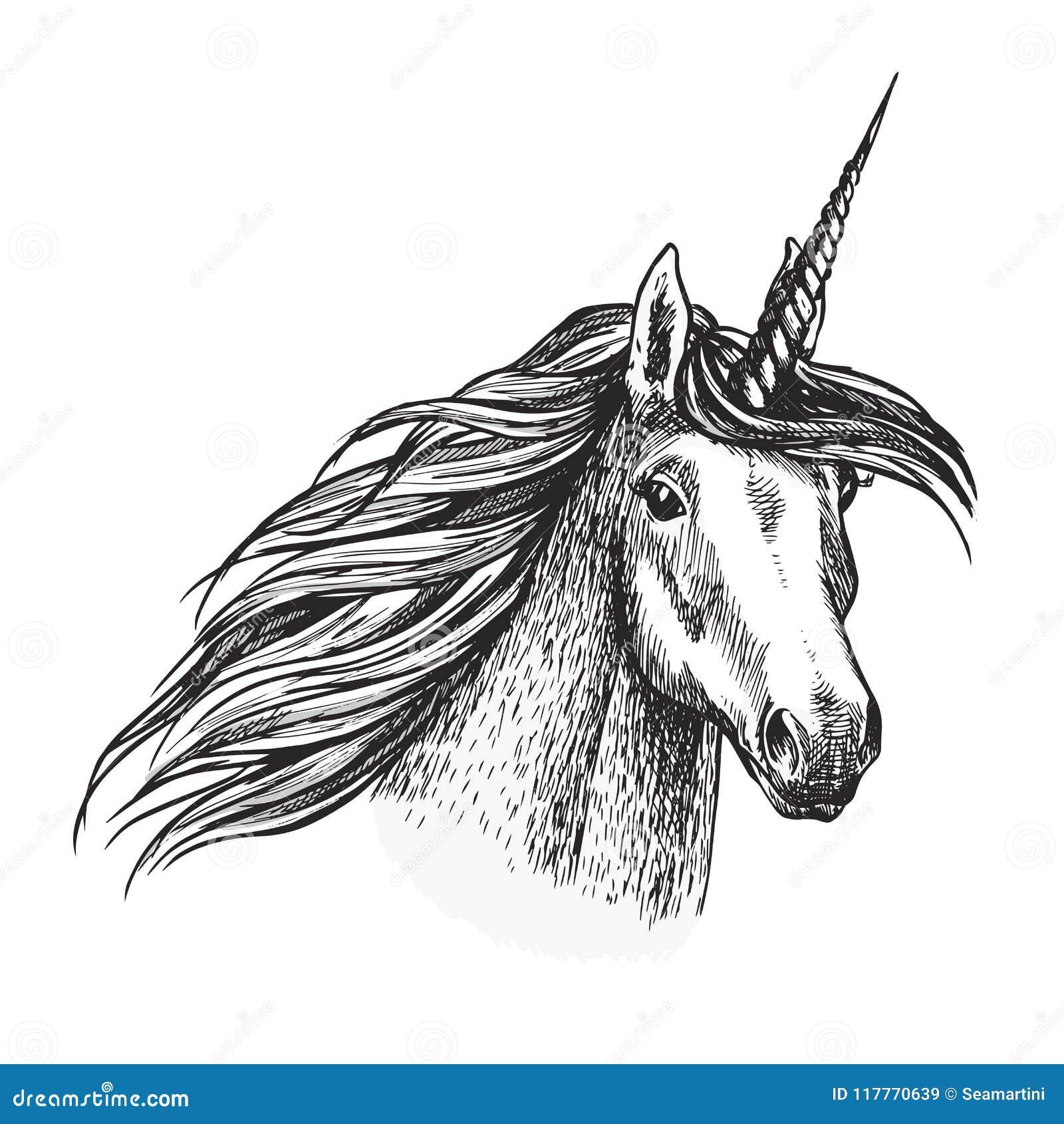 Unicorn Horse Animal Sketch Of Magic Creation Stock Vector