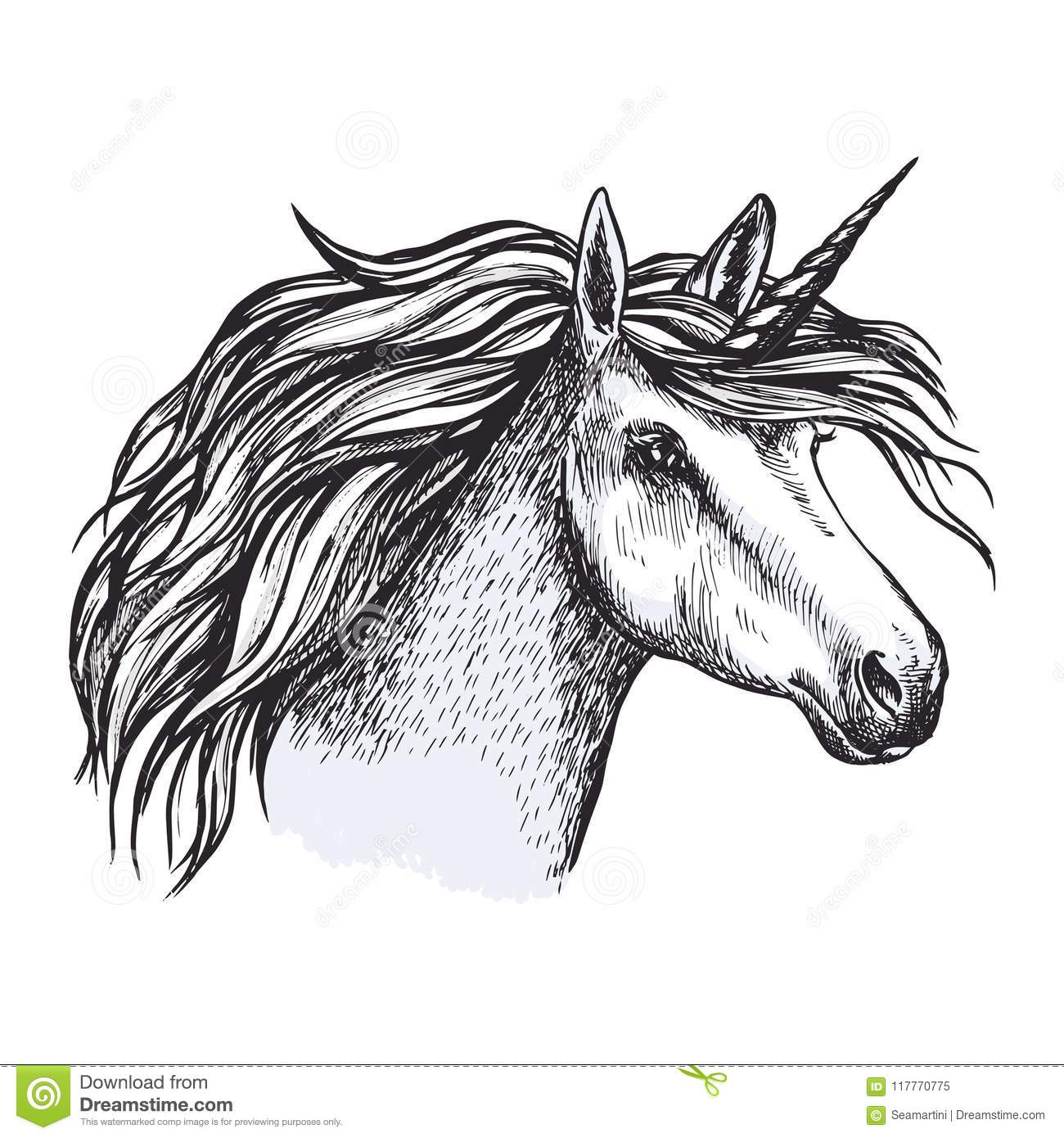 Unicorn Horse With Horn Sketch Of Magic Animal Stock Vector Illustration Of Gray Fairy 117770775