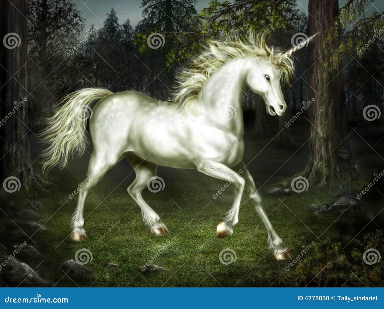 Unicornio agraciado en el bosque