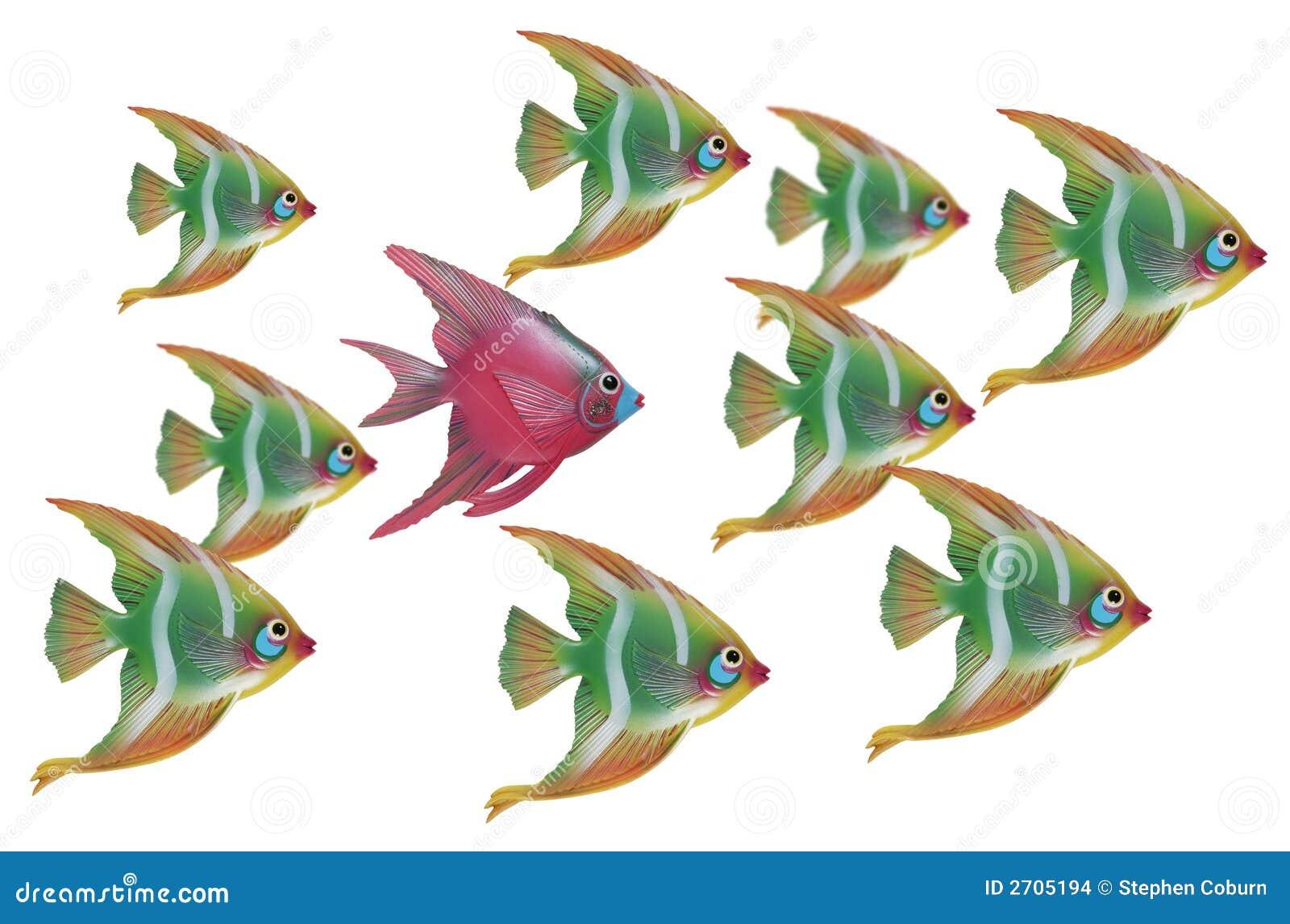 Unikalny ryb