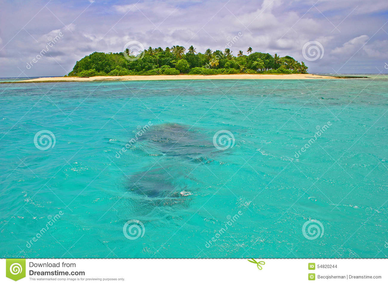Tropical South Pacific Islands