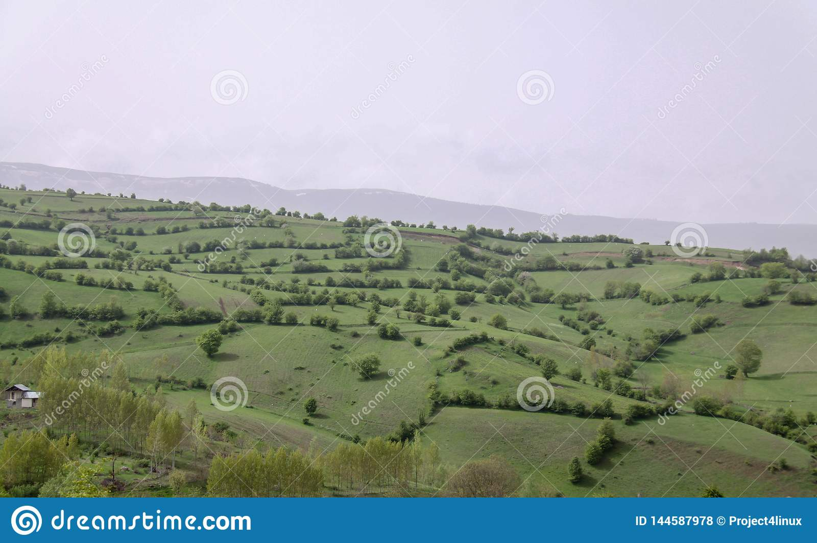 Unique plains landscape with trees in north of Iran, Gilan