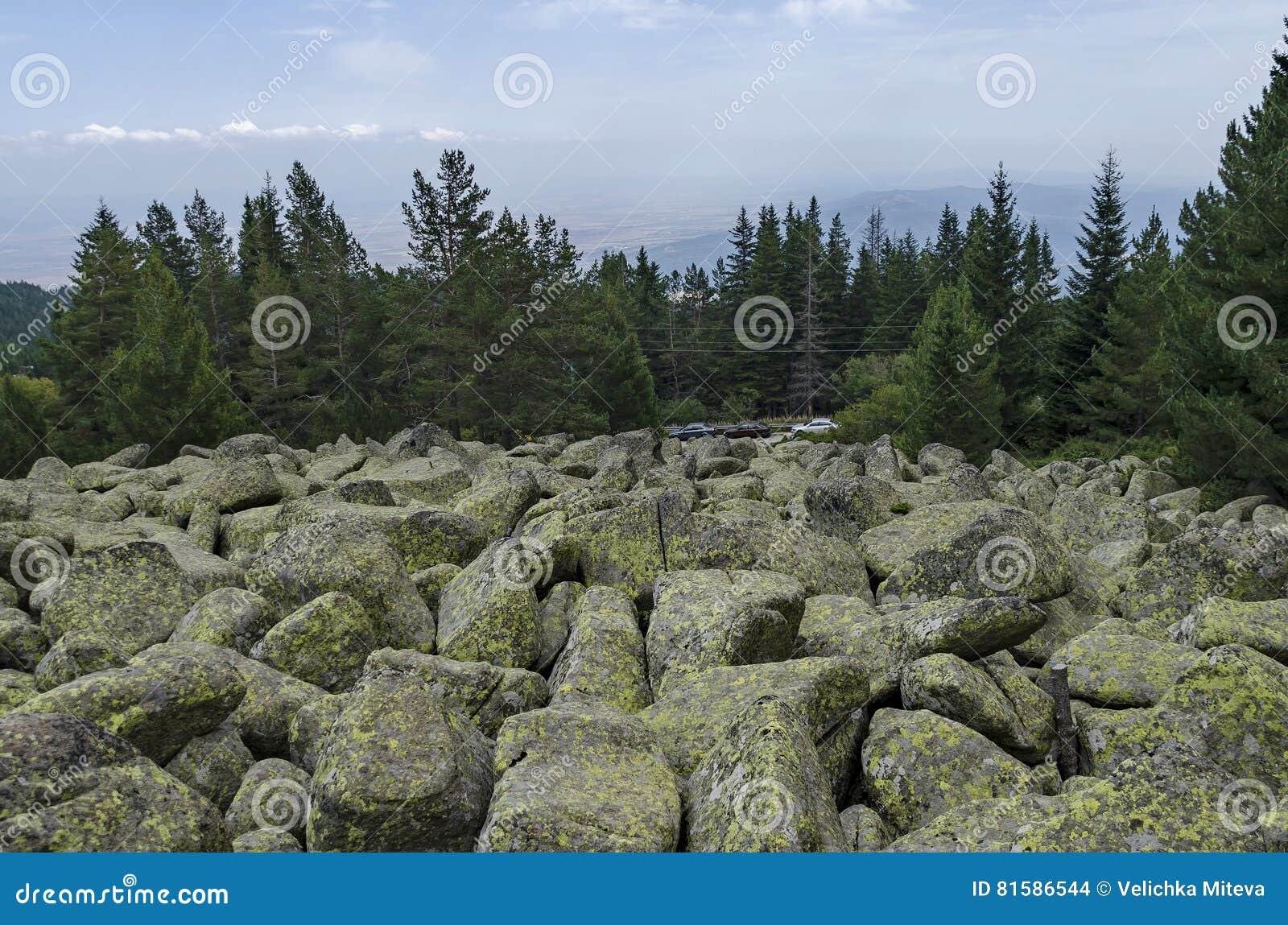 Huge Granite Stone : Unique stone river with big granite stones or moraine