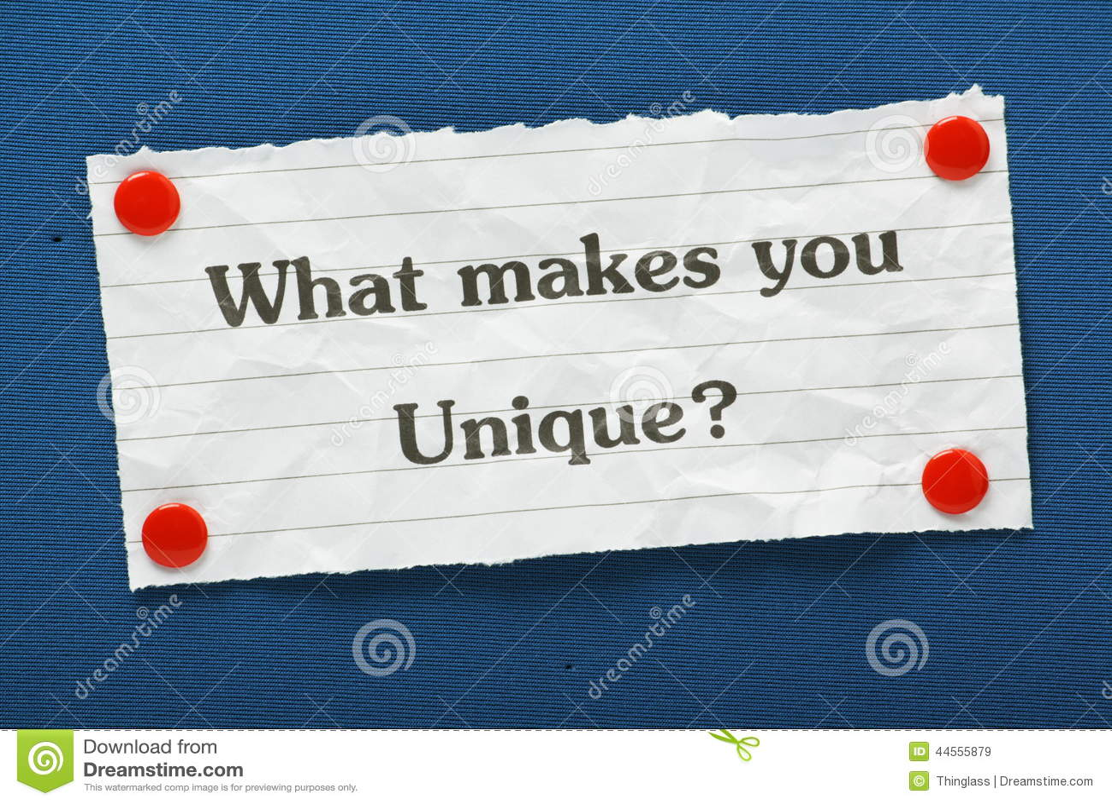 what makes you unique essay